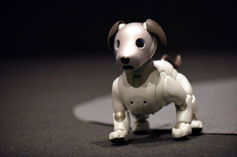 """Sony's latest entertainment robot """"aibo"""" is displayed during a press preview at the company's headquarters in Tokyo on November 1, 2017.   Japanese electronics giant Sony is marking the year of the dog by bringing back to life its robot canine -- packed with artificial intelligence and internet capability. / AFP PHOTO / Kazuhiro NOGI"""