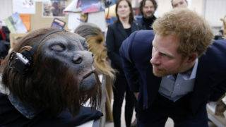IVER HEATH, ENGLAND - APRIL 19: Prince Harry takes a closer look at a robotic mask during a tour of the Star Wars sets at Pinewood studios on April 19, 2016  in Iver Heath, England. Prince William and Prince Harry are touring Pinewood studios to visit the production workshops and meet the creative teams working behind the scenes on the Star Wars films. (Photo by Adrian Dennis-WPA Pool/Getty IMages)