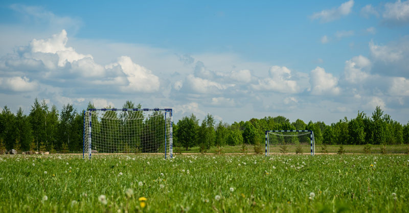football goal in a field on background of forest and sky