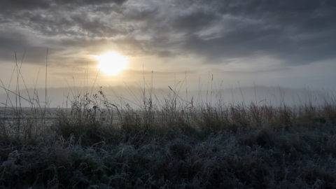 Sunrise in a foggy landscape with cold frosty grass in the foreground.