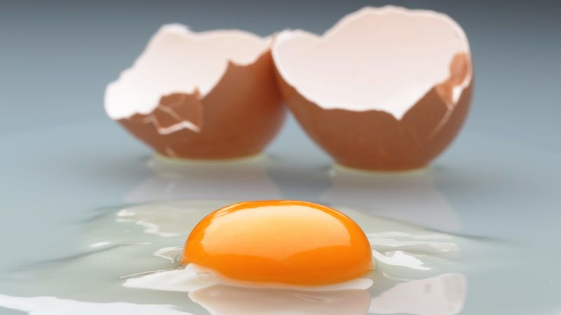 BERLIN, GERMANY - JANUARY 05:  In this photo illustration an egg yolk and its shell are pictured on January 5, 2011 in Berlin, Germany. German authorities across the country are on high alert following the disclosure that the animal feeds company Harles and Jentsch GmbH sold large quantities of dioxin-tainted animal feed to poultry and hog farmers. Authorites in Lower Saxony have halted eggs and meats shipments from 1,000 farms as a precaution, and consumer groups have warned the public against eating eggs for the time being.  (Photo Illustration by Andreas Rentz/Getty Images