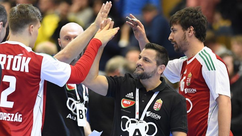 Hungary's coach Ljubomir Vranjes during high-fives his players during a friendly handball match between Sweden and Hungary at Kinnarp Arena, Jonkoping, Sweden, on January 6, 2018. / AFP PHOTO / TT NEWS AGENCY AND TT News Agency / Mikael FRITZON / Sweden OUT