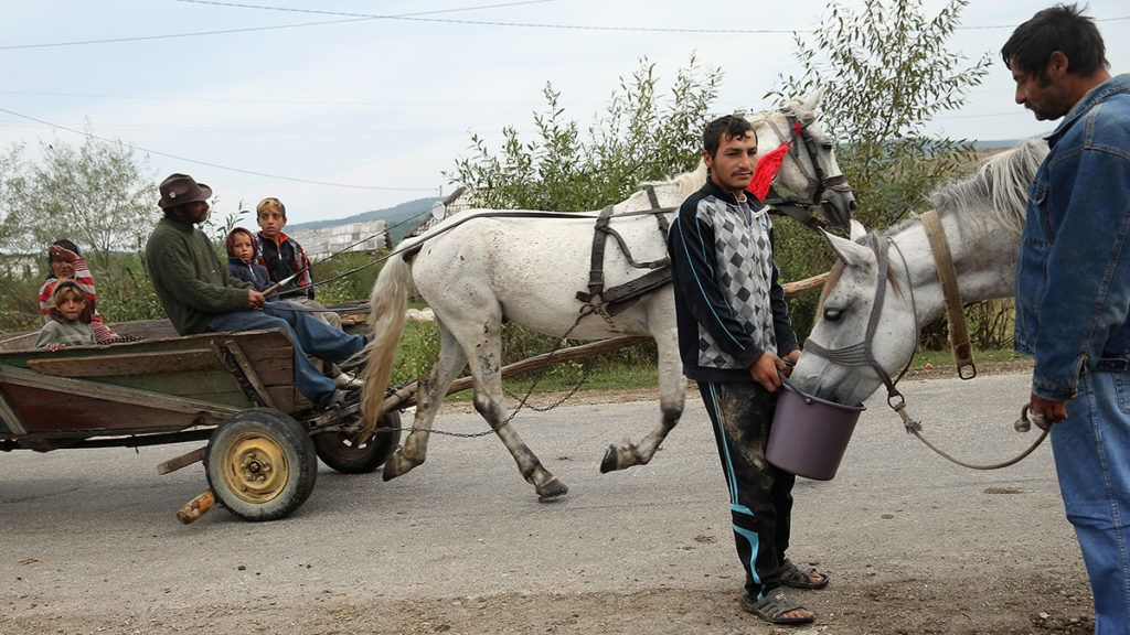 PONORATA, ROMANIA - SEPTEMBER 11:  Local Roma residents ride a horse-drawn cart, which for many locals is the main means of transportation, out of town in the abjectly poor Roma settlement of Ponorata on September 11, 2013 in Ponorata, Romania. Between 400 and 500 Roma live in squalor at Ponorata, few have access to electricity and 95% of them are illiterate and unemployed. A Romanian NGO called OvidiuRo, co-founded by Leslie Hawke, who is the mother of American actor Ethan Hawke, is attempting to get young Roma children to regularly attend pre-school through a coupon incentive system for food at Ponorata and 23 other Roma communities across Romania. Many Roma from Ponorata have spent time in France to earn money, mostly through begging and scrap metal collection.  (Photo by Sean Gallup/Getty Images)