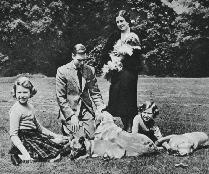 The royal family forming a happy group of dog lovers; with their Tibetan lion dog, labradors, and corgis, 1937. A print from the Illustrated London News: Coronation Record Number, London, 1937. (Photo by The Print Collector/Print Collector/Getty Images)