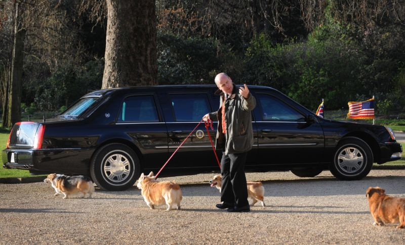LONDON - APRIL 1:  Queen Elizabeth II's corgis walk past US President Obama's car in the grounds of Buckingham Palace while he has an audience with The Queen on April 1, 2009 in London, England.(Photo by Anwar Hussein/Getty Images)