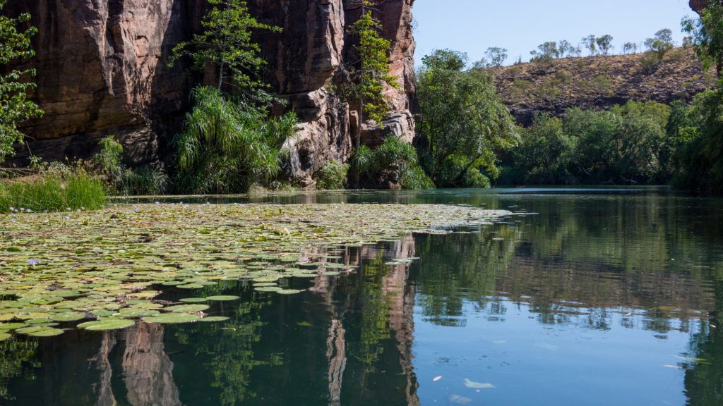 Lawn Hill Gorge, Queensland, Australia with waterlilies and reflections