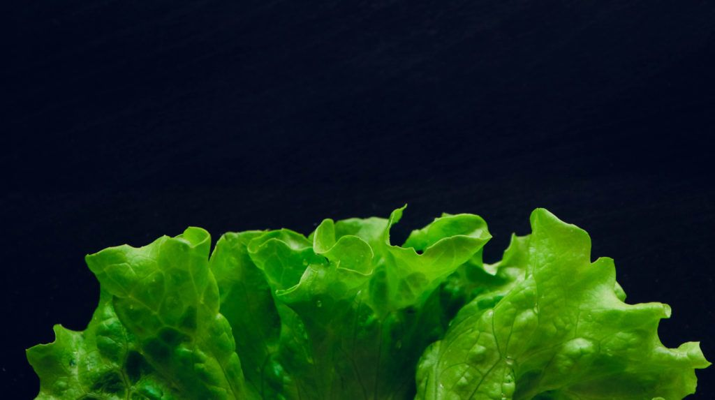 Fresh salad leaf with water drops, macro view on a black table. Green salad leaves backdrop.