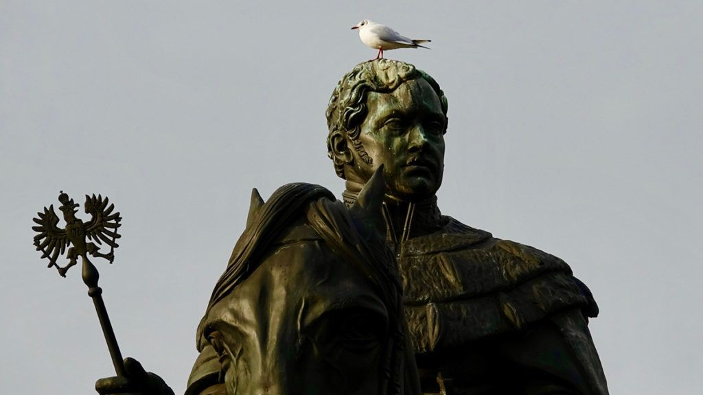 Monument with gull on head