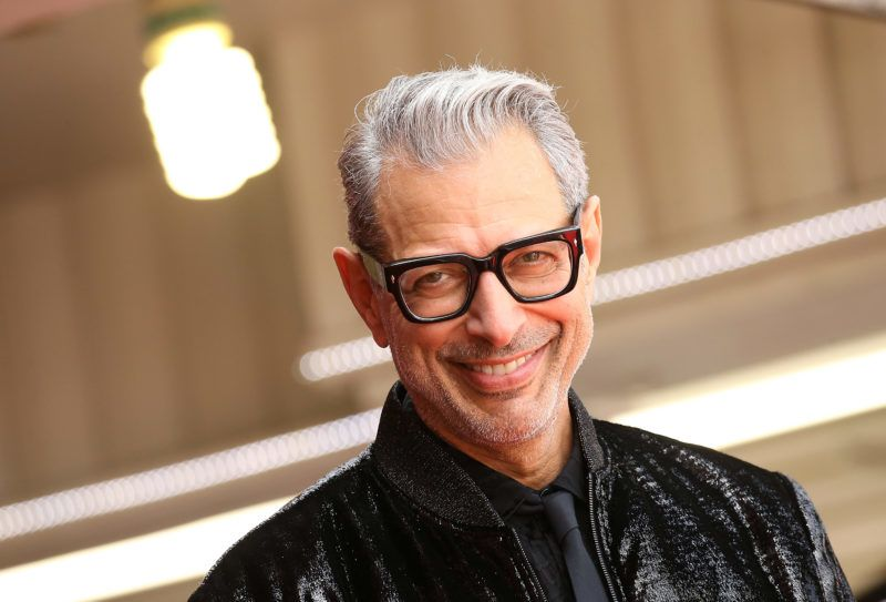 HOLLYWOOD, CA - JUNE 14:  Jeff Goldblum attends the ceremony honoring him with a Star on The Hollywood Walk of Fame held on June 14, 2018 in Hollywood, California.  (Photo by Michael Tran/FilmMagic)