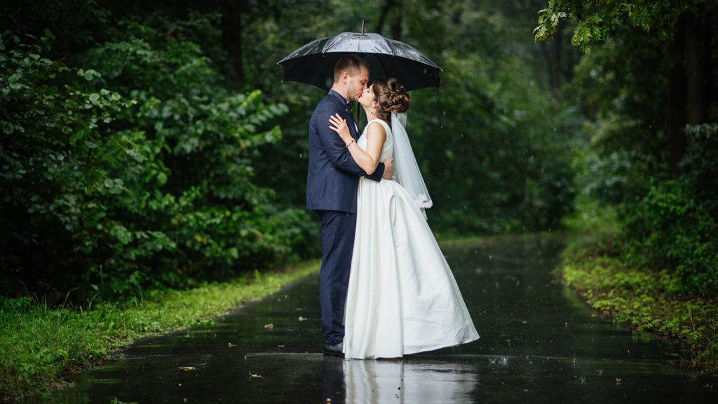 The bride kisses the groom on a background of green nature in the rain with an umbrella