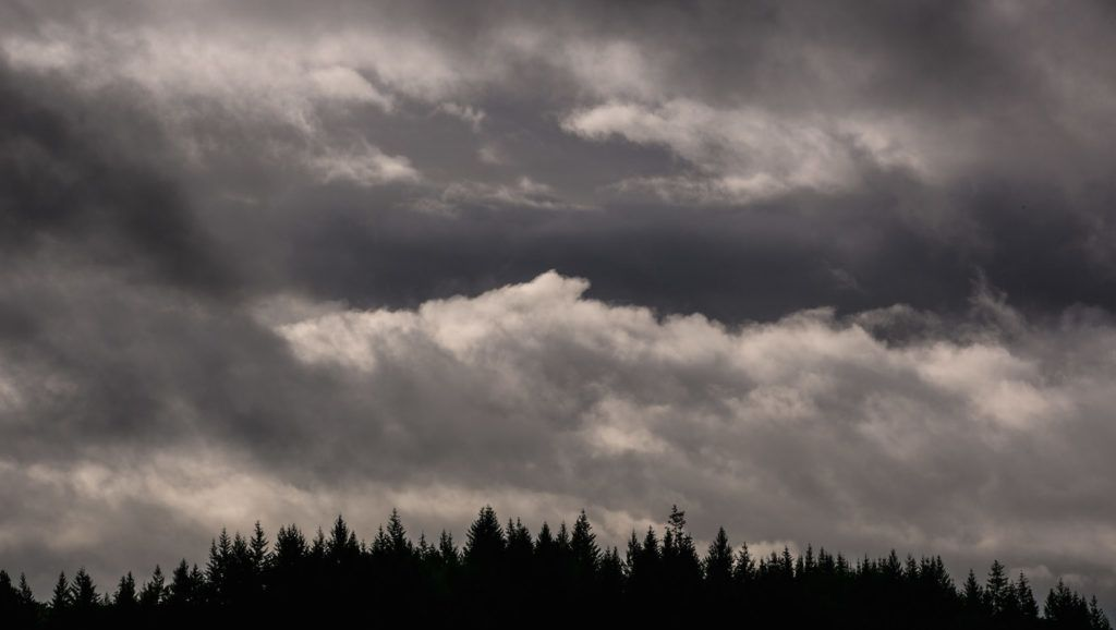 DUNDEE, OR - OCTOBER 5:  Rain and fog along Worden Hill Road, located in the Dundee Hills AVA, is viewed on October 5, 2016, near McMinnville, Oregon.  Dundee, Carlton, McMinnville, and Newburg, all small towns located in the Willamette Valley wine production areas, have become the epicenters of Oregon's wine destination tourism. (Photo by George Rose/Getty Images)