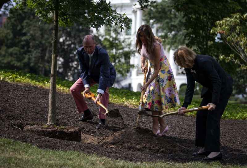 U.S. First lady Melania Trump, center, plants a sapling from the original Eisenhower Oak tree with Richard Emory Gatchell Jr., fifth generation grandson of former President James Monroe, left, and Mary Jean Eisenhower, granddaughter of former President Dwight D. Eisenhower, on the South Lawn of the White House in Washington, D.C., U.S., on Monday, Aug. 27, 2018. The White House lowered its flag to half-staff Monday afternoon following a barrage of criticism for ending the tribute to deceased SenatorJohn McCainjust one day after he died. Photographer: Al Drago/Bloomberg via Getty Images