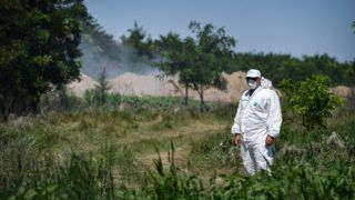 A man wearing a protection suit guards the site where pig bodies are being burned after the animals were culled on August 9, 2018 in the village of Tufesti, southern Romania. An African Swine Fever epidemic has broken out inn southeastern and northwestern regions of Romania. The National Sanitary Veterinary and Food Safety Authority (ANSVSA) announced a survey of the African swine fever epidemic, announcing that there are 547 outbreaks in 98 localities. The number of slaughtered animals is estimated at 50,000. / AFP PHOTO / Daniel MIHAILESCU