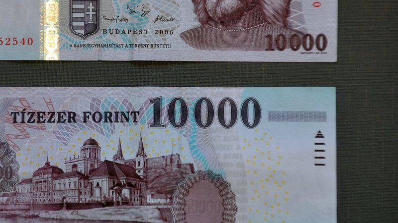Front and reverse side of a Hungarian note, the ten-thousand forint (about 34 euro) is seen in Budapest on December 29, 2011. AFP PHOTO / ATTILA KISBENEDEK / AFP PHOTO / ATTILA KISBENEDEK
