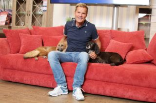 HAMBURG, GERMANY - SEPTEMBER 18: Dieter Bohlen attends the presentation of his new living world at Roller furniture store on September 18, 2018 in Hamburg, Germany. (Photo by Tristar Media/Getty Images)