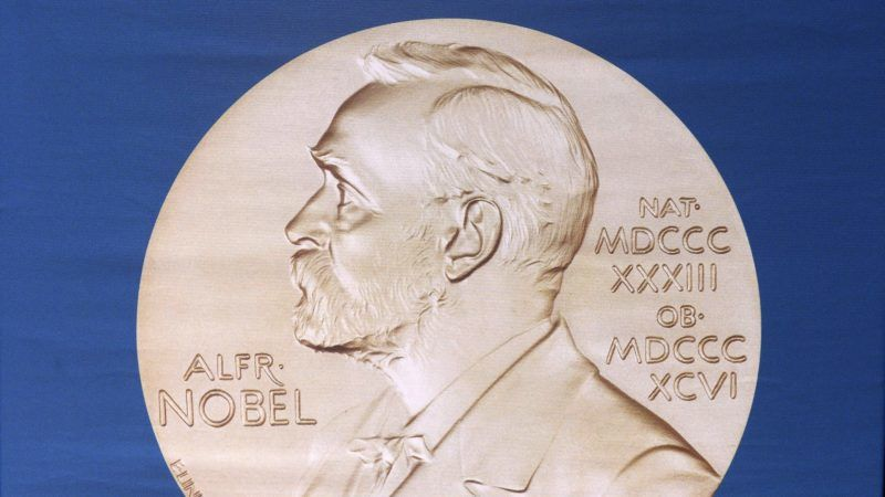 (FILES) In this file photo taken on October 5, 2015 the laureate medal featuring the portrait of Alfred Nobel is seen before a press conference of the Nobel Committee to announce the winner of the 2015 Nobel Medicine Prize at the Karolinska Institutet in Stockholm, Sweden.  It's easier to lose a Nobel Prize than to win one. Smuggled out to impress girls in a bar, or dissolved to prevent the Nazis from getting their hands on one, the precious gold medals have gone missing in crazy, tragic or spectacular ways over the more than 100-year history of the Nobel Prize. / AFP PHOTO / Jonathan NACKSTRAND