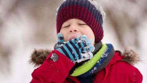 Portrait of cute kid boy trying to eat snow outdoors. Child having fun in a winter park. Childhood and winter concept