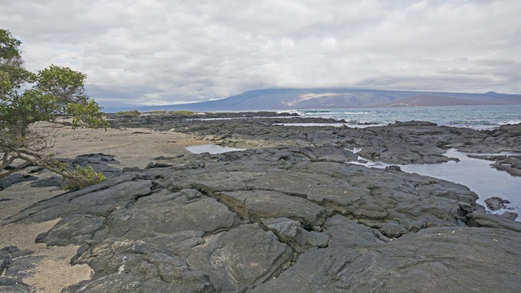 Lava and Sand on Fernandina Island in the Galapagos