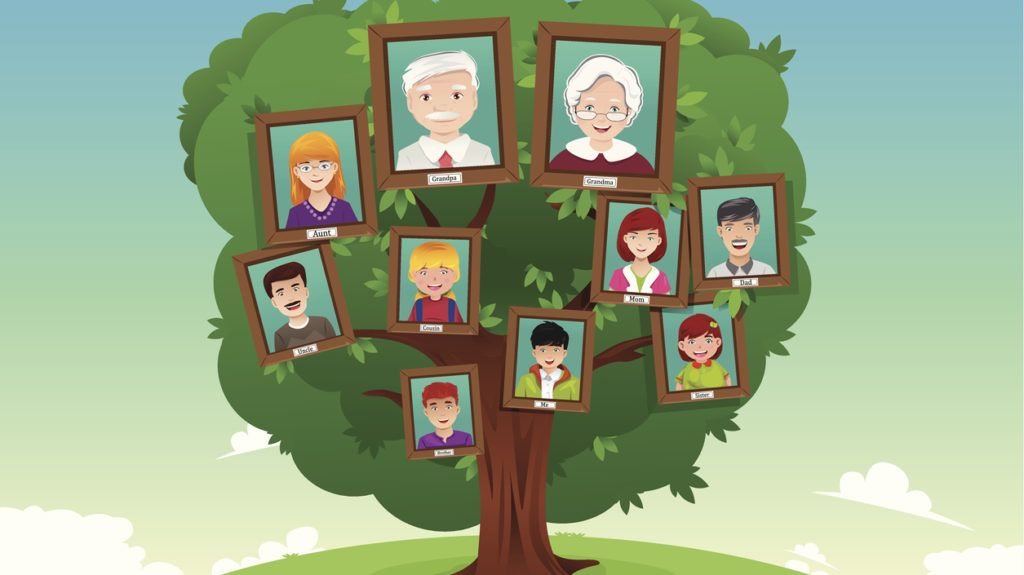 A vector illustration of concept of family tree