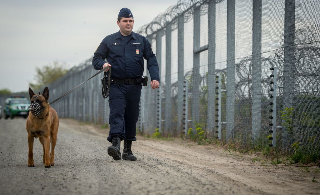 """(----EDITORIAL USE ONLY – MANDATORY CREDIT - """"HUNGARIAN INTERIOR MINISTRY PRESS OFFICE / HANDOUT"""" - NO MARKETING NO ADVERTISING CAMPAIGNS - DISTRIBUTED AS A SERVICE TO CLIENTS----) ROSZKE, HUNGARY - APRIL 28 :  A police officer with a dog patrols along the border fence on the Hungarian-Serbian border near Roszke, 180 kms southeast of Budapest, Hungary, Friday, April 28, 2017 Hungarian Interior Ministry Press Office / Handout / Anadolu Agency"""