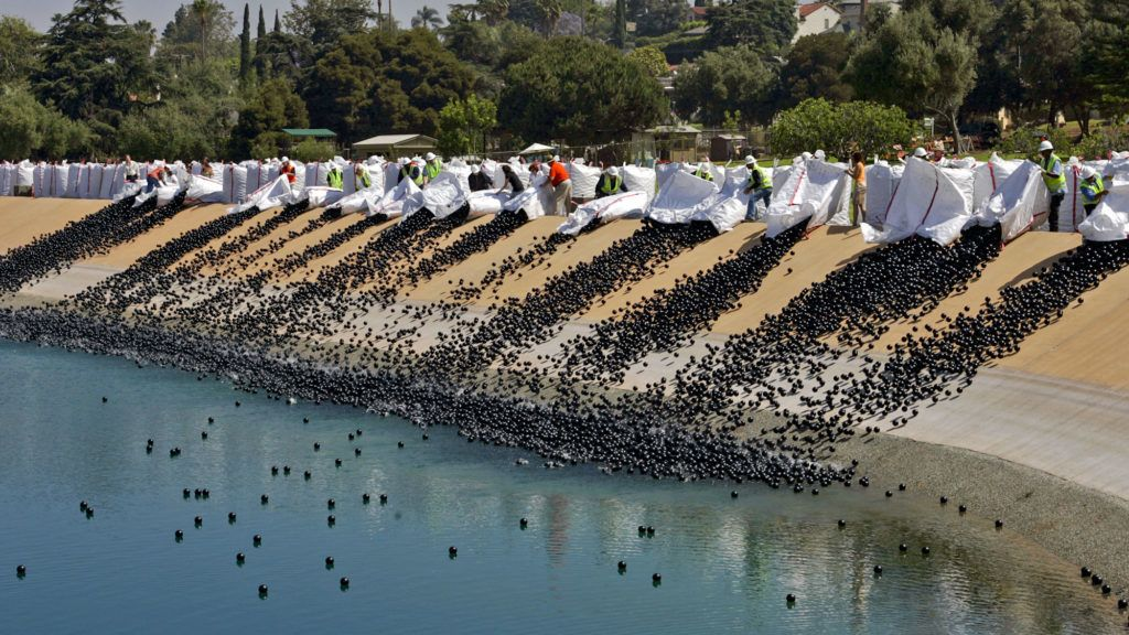 "DWP workers are emptying out bales of plastic balls in Ivanhoe reservoir on June 09, 2008 morning in Los Angeles. Department of Water and Power released about 400,000 black plastic 4"" balls as the first installment of approximately 3 million such balls to form a floating cover over 7 acres of the reservoir. The whole process is to protect drinking water from sunlight that generates harmful bromide.  (Photo by Irfan Khan/Los Angeles Times via Getty Images)"