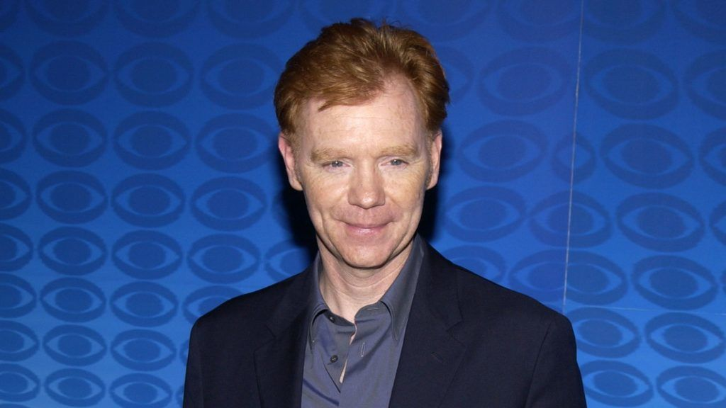 David Caruso during CBS Summer 2002 Press Tour & Party at Ritz Carlton Hotel in Pasadena, California, United States. (Photo by Jean-Paul Aussenard/WireImage)