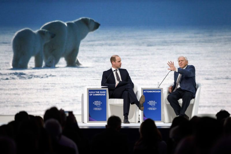 Britain's Prince William, Duke of Cambridge (L) and British naturalist, documentary maker and broadcaster David Attenborough attend a conversation during the World Economic Forum (WEF) annual meeting, on January 22, 2019 in Davos, eastern Switzerland. (Photo by Fabrice COFFRINI / AFP)