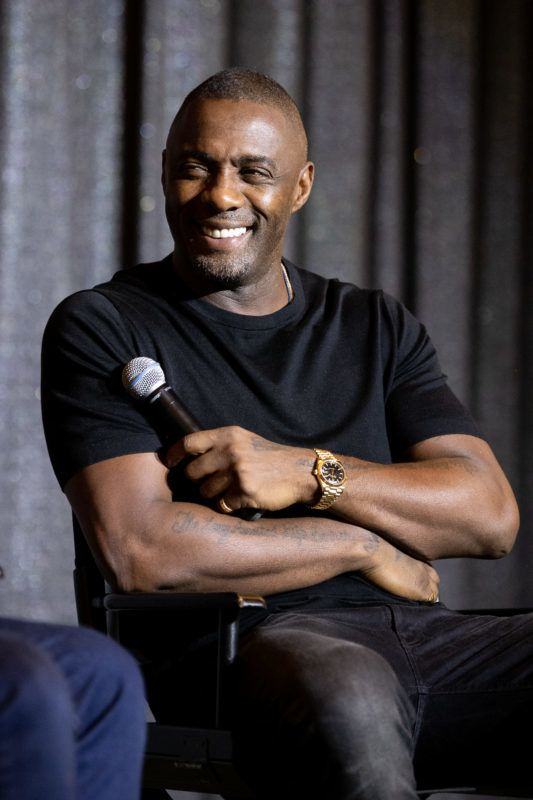 WEST HOLLYWOOD, CALIFORNIA - MARCH 02: Idris Elba speaks onstage at Netflix's 'Turn Up Charlie' For Your Consideration event at Pacific Design Center on March 02, 2019 in West Hollywood, California. (Photo by Emma McIntyre/Getty Images)