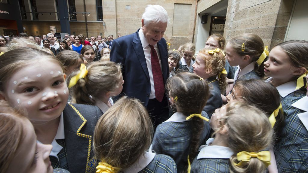 SYDNEY, AUSTRALIA - FEBRUARY 08:  Sir David Attenborough meets school children from Kambala School whilst at the Australian Museum to receive a Lifetime Patron award at a special luncheon on February 8, 2017 in Sydney, Australia. Sir David was recognised for his lifetime's work in the fields of natural science and conservation. The Australian Museum also named its newly discovered genus after the living legend, the Attenborougharion rubicundus - a snail, 35-45mm long, found only in Tasmania.  (Photo by James D. Morgan/Getty Images)