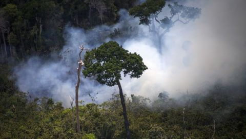 """View of a forest fire in the Amazon forest during an overflight by Greenpeace activists over areas of illegal exploitation of timber, as part of the second stage of the """"The Amazon's Silent Crisis"""" report, in the state of Para, Brazil, on October 14, 2014. According to Greenpeace's report, timber trucks carry at night illegally felled trees to sawmills, which then process them and export the wood as if it was from a legal origin to France, Belgium, Sweden and the Netherlands. AFP PHOTO / Raphael Alves (Photo by RAPHAEL ALVES / AFP)"""