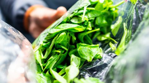 Closeup of person hands holding fresh raw, plastic packaged bag of green spinach, vibrant color, healthy salad