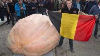 Belgian Mathias Willemijns poses with his winning atlantic giant pumpkin after the weight-off at the Giant Pumpkin European Championship in Ludwigsburg, southwestern Germany, on October 9, 2016.  Willemjins' pumpkin has the new world record weight of 1.190,5 kg. / AFP PHOTO / THOMAS KIENZLE