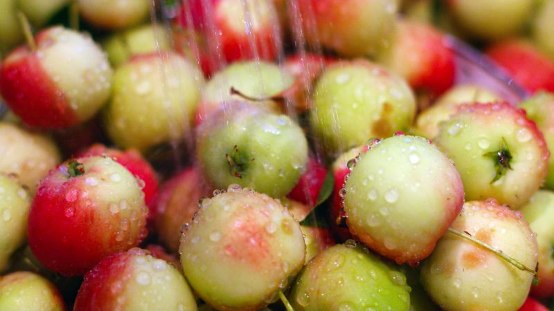 Apples being washed in sink