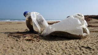 empty plastic bottle on a beach in Italy in February 2015