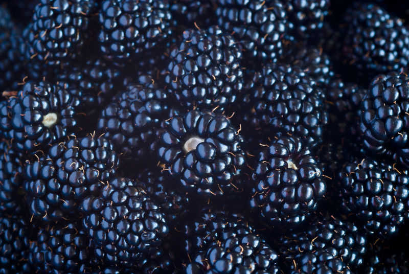 Sweet Blackberry berry closeup view background